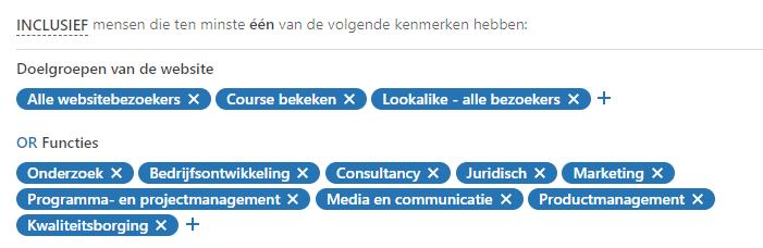 LinkedIn voorbeeld-targeting
