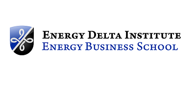 Energy Delta Institute Google Grants
